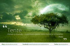 """""""Tente mover o mundo - o primeiro passo será mover a si mesmo."""" Platão    Veja mais sobre Espiritualidade & Autoconhecimento em: http://sobrebudismo.com.br/"""