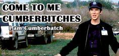 Come to me Cumberbitches. I am Cumberbatch. Gif. I prefer the term Cumbersister... united in lurve!