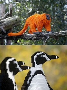 Two of my favorite things:  Legos and animals!