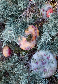 These frozen ornaments add festive splashes of color to your yard during cold winter months. Frozen Ornaments, How To Make Ornaments, All Things Christmas, Christmas Holidays, Christmas Ornaments, Christmas Ideas, Merry Christmas, Christmas Craft Projects, Holiday Crafts