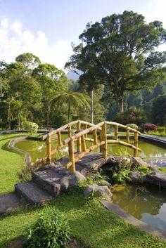49 backyard garden bridge ideas and designs photos - Japanese Garden Bridge Drawing
