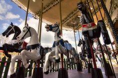 The Needles Park Crazy Horses | Flickr - Photo Sharing!