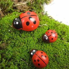 20pcs Micro Landscape Wooden Red Ladybug Garden DIY Decor   BidderFace