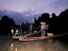 kormorat fishing in china | Cormorant Fishing Yangshuo, Cormorant Fishing Yangshuo Tour, Cormorant ...