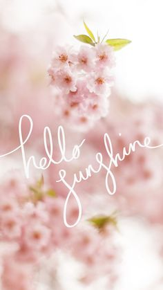 phone wall paper spring hello sunshine quote, blooming flowers in the background, phone wallpaper, images of spring Wallpapers Android, Cute Wallpapers, Stunning Wallpapers, Blooming Flowers, Spring Flowers, Phone Backgrounds, Wallpaper Backgrounds, Hello Spring Wallpaper, Hello Sunshine