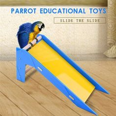 Parrot's Slide Training Bird Toys Parrot Educational Toys for small and medium size parrots random color #Affiliate