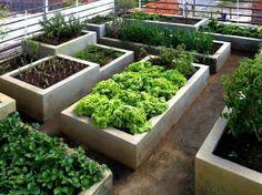 Starting A Vegetable Garden, Vegetable Garden Design, House Plants Decor, Plant Decor, Small Gardens, Outdoor Gardens, Herb Garden, Home And Garden, Vegetable Planters