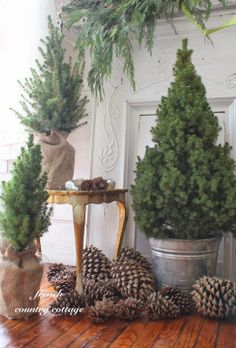 Mini Christmas Trees *Love the burlap and pincones!*... sometimes plain is so pretty