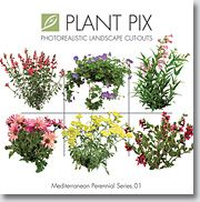 Plantpix Mediterranian Perennials 01 A collection of 108 cut-outs of designer-selected, realistic perennials. Labeled with Latin and common names for easy reference. These High resolution images have been converted to High quality #billboards bij Artlantismedia.com. The billboards are exclusively available on Artlantismdia.com only.  Mediterranean Perennial 01 volume contains the most widely-used and valued Mediterranean perennials by landscape professionals today. The collection provides…