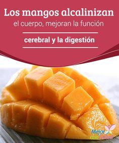 Los mangos alcalinizan el cuerpo, mejoran la función cerebral y la digestión  Los mangos son conocidos en todo el mundo por su delicioso sabor y versatilidad a la hora de preparar diversos platos.