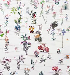 zadok ben-david | Blackfield is an installation by London based artist Zadok Ben-David. It contains up to 20,000 steel etched, hand painted flowers deriving from 19th Century Victorian Encyclopedias!