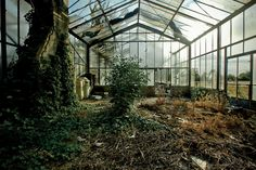 """Just off Route 9 in Yonkers, a half-hour drive north of New York City, the Boyce Thompson Institute is an abandoned agricultural institute where the plants have gone wild.""Photographed by George on Flickr."