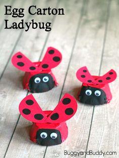 Adorable egg carton ladybug craft for kids. Super cute craft for a bug unit!