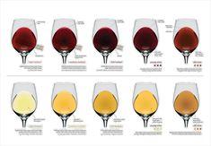 Podcast 67: a cor do vinho - Alessandra Esteves