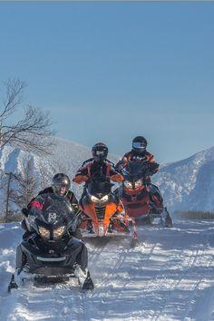 Plan a Snowmobile Trip in Gaspésie Kawasaki Motorcycles, Triumph Motorcycles, Custom Motorcycles, Motorcycle Quotes, Girl Motorcycle, Dirt Bike Girl, Antique Tractors, Dirtbikes, Modified Cars