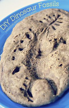 DIY: Dinosaur Fossils from Lessons Learnt Journal