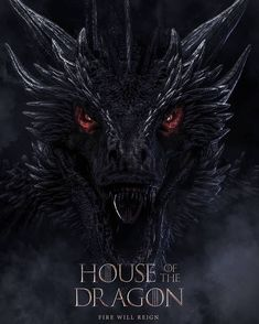 official Balerion The Black Dread poster Game Of Thrones Cover, Game Of Thrones Art, Game Of Thrones Houses, Drogon Game Of Thrones, Game Of Thrones Dragons, Balerion The Black Dread, House Of Dragons, Black Dreads, Dragon Series