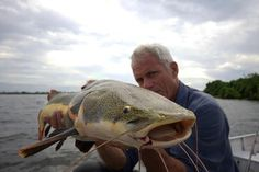 Jeremy Wade and a Red-tailed catfish - http://www.animalplanet.com/tv-shows/river-monsters/photos/bone-crusher-pictures/