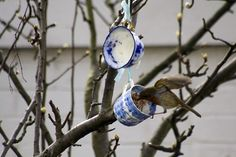 Making these this weekend - so lovely to get the birds back in the vintage teacup bird feeders