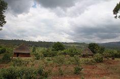 Kacha Bira www.rootsethiopia.org #ethiopia