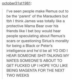 the marauders - I fell like Remus was the most responsible but James was the most loyal and protective. <<< you think REMUS was the most responsible? Harry Potter Jokes, Harry Potter Fandom, Hogwarts, Slytherin, Yer A Wizard Harry, Fandoms, Nerd, James Potter, Harry Potter Universal
