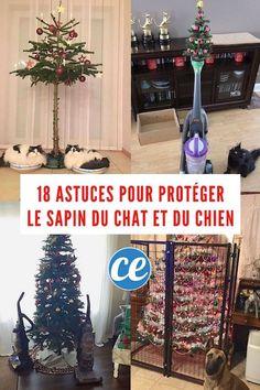 18 Photos de Gens Qui Ont Trouvé une Astuce Pour Protéger le Sapin de Noël du Chat Et du Chien.