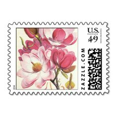 =>>Save on          Vintage Floral, Blooming Pink Magnolia Flowers Postage Stamps           Vintage Floral, Blooming Pink Magnolia Flowers Postage Stamps lowest price for you. In addition you can compare price with another store and read helpful reviews. BuyHow to          Vintage Floral, B...Cleck Hot Deals >>> http://www.zazzle.com/vintage_floral_blooming_pink_magnolia_flowers_postage-172057607218645254?rf=238627982471231924&zbar=1&tc=terrest