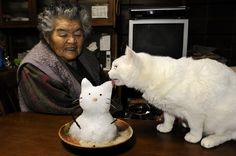The Japanese photographer Ihara Miyoko records the day-to-day story of the grandmother Missao and her little white cat Fukumaru. (from a Chinese blog)