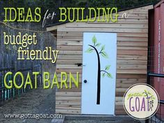 At GottaGoat Farm, we are raising and selling two specific breeds of goats: Nigerian Dwarf Goats, and Miniature Silky Fainting Goats. Read all about our goats. Mini Goats, Baby Goats, Goat Playground, Small Goat, Goat Shelter, Goat Barn, Nigerian Dwarf Goats, Raising Goats, Future Farms