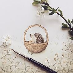Hedgehog fun Still waiting for the first one to come to my garden this spring. Hope your Friday will be lovely. I am packing your orders now . Thank you all for your support #illustration #garden #blossom #hedgehog #watercolor #cute #animals #flowers #meadow #basket #baby #kidlitart #gouachepainting #stationary #drawing #painting #friday #creative #spring #instaart