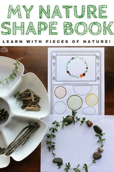Do your students love spending time playing and learning outdoors? Try using My Nature Shape Book as a fun and hands-on way for students to learn 13 different 2D shapes. This resource comes with 3 leveled options to differentiate for student needs and interests. I also included a half page option to save on paper! Math Activities For Kids, Hands On Activities, School Tables, Lesson Plans For Toddlers, Shape Books, Learning Shapes, Inspired Learning, Outdoor Classroom, Montessori Toddler