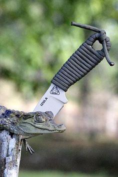 "ESEE Knives IZULA (Venom Green) Neck Knife Complete Survival Kit, 6.25"" Overall - KnifeCenterf"