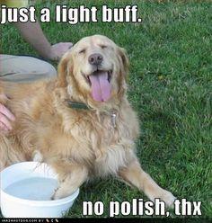 Dog Mani-Pedi