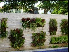 Growing up: The Vertical Garden Garden Wall Designs, Garden Design, Compound Wall Design, Green Facade, Vertical Garden Wall, Water Walls, Plant Wall, Tropical Garden, Garden Beds