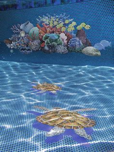 Reef + turtle mosaic tile designs add a fun new dynamic to any pool! Mosaic Tile Designs, Ceramic Mosaic Tile, Mosaic Glass, Mosaic Artwork, Custom Pools, Beautiful Pools, Art Day, Red Roses, Dream Pools