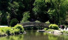 edwards garden bridge