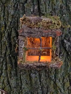 This whimsical window is adorable hanging on a tree with a fairy door. A timed led tea light brings your fairy tree to life.  Approximately