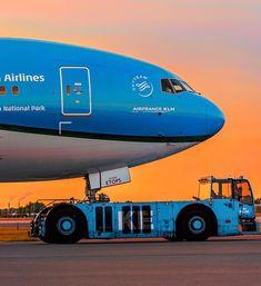 Cargo Aircraft, Passenger Aircraft, Air Birds, Airline Alliance, Jet Airways, Boeing 777, Commercial Aircraft, Civil Aviation, Air France