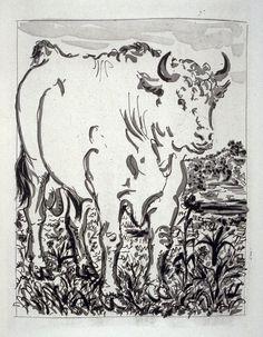 Picasso/Original Etchings for the Texts by Buffon) (Paris: Martin Fabiani, 1942