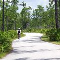Biking the Starkey Trail, Pasco County near Tampa, Florida