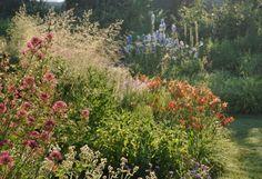 Wichtig ist, dass man schon zeitig im Jahr blühende Gräser hat, wie hier im Bild die Rasen-Schmiele oder das Garten-Sandrohr.