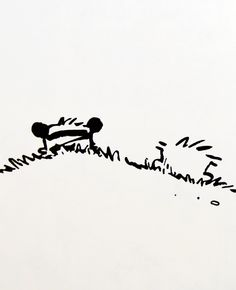 "Calvin and Hobbes QUOTE OF THE DAY (DA): ""Weekends don't count unless you spend them doing something completely pointless."" -- Bill Watterson (words to live by)"