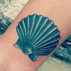 Terquoise Scallop sea shell tattoo I just got!!!
