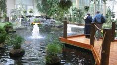 Devonian Gardens Calgary - I have been here- Beautiful!