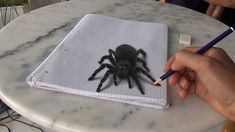 Tarantula Spider. 3D Optical Illusions Drawings and Paintings, come see the the videos of how they are made. To see more art and information about Stefan Pabst click the image.