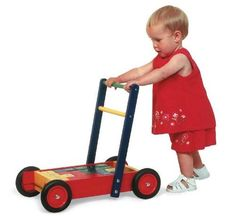 Pintoy Push Along Baby Walker and Alphabet Blocks