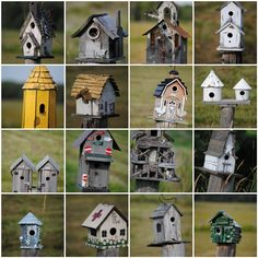 What is it about birdhouses that make them so interesting and cute?