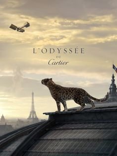 The iconic Cartier panther on the rooftops of Paris...