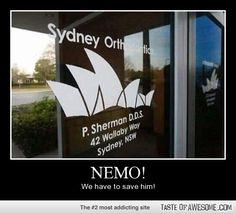 42 Wallaby Way, Nemo!!!