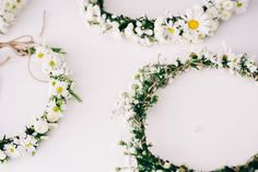 daisy crowns   from us photography   via: the lane